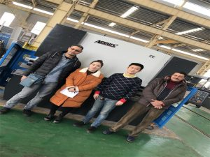 Egypt Kunder Kjøp Press Brake Machine Fra Accurl Companies